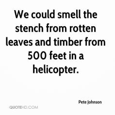 pete-johnson-quote-we-could-smell-the-stench-from-rotten-leaves-and-ti